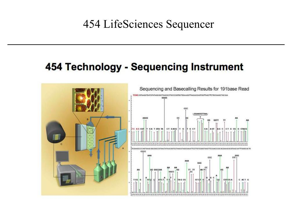 454 LifeSciences Sequencer