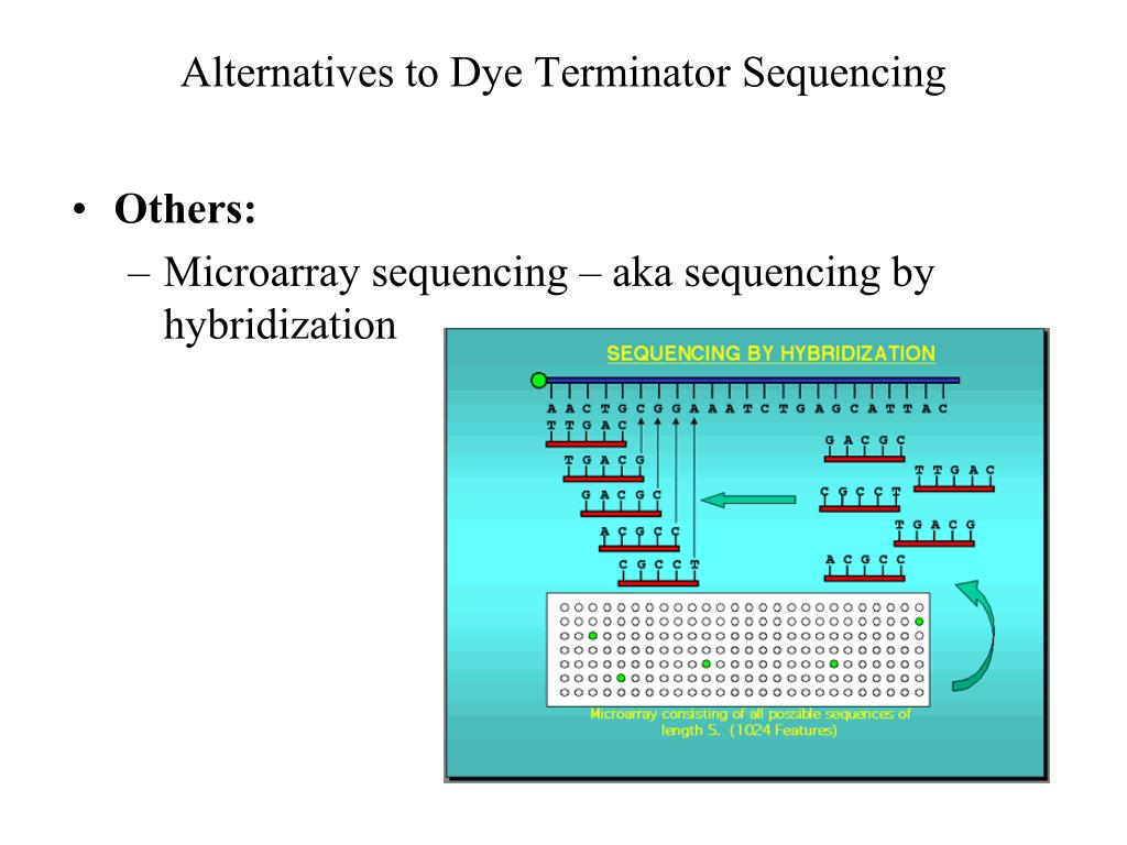 Alternatives to Dye Terminator Sequencing