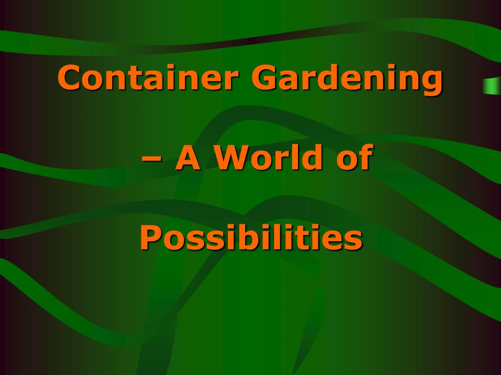container gardening a world of possibilities l.