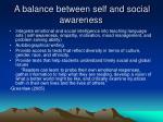a balance between self and social awareness
