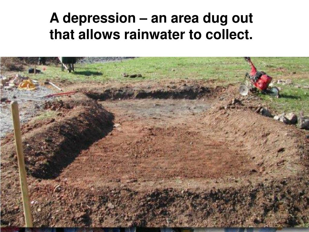 A depression – an area dug out that allows rainwater to collect.