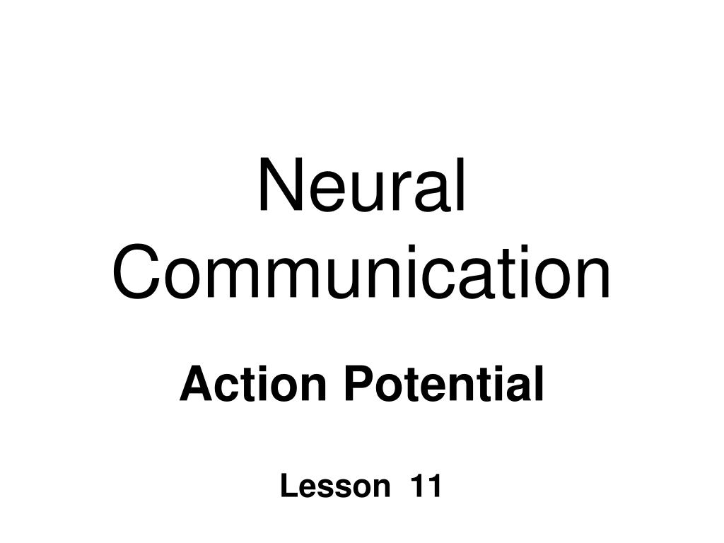neural communication l.