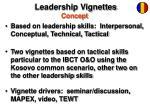 leadership vignettes concept