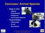 zoonoses animal species