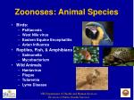 zoonoses animal species4