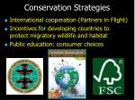 conservation strategies