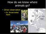 how do we know where animals go