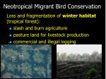 neotropical migrant bird conservation20