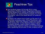 peachtree tips6