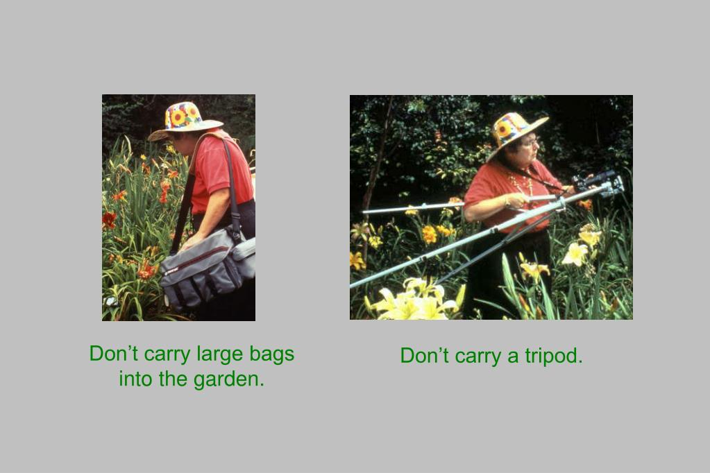 Don't carry large bags into the garden.