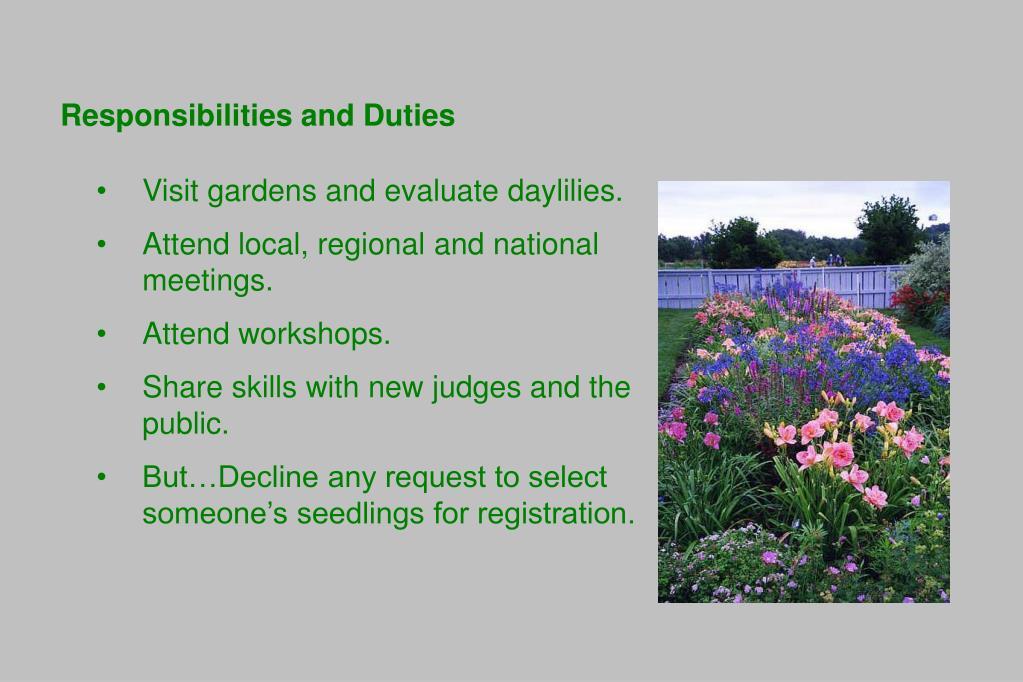 Responsibilities and Duties