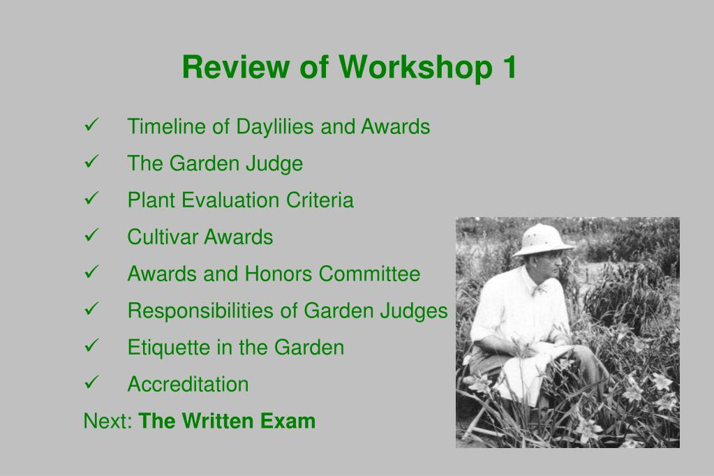 Timeline of Daylilies and Awards