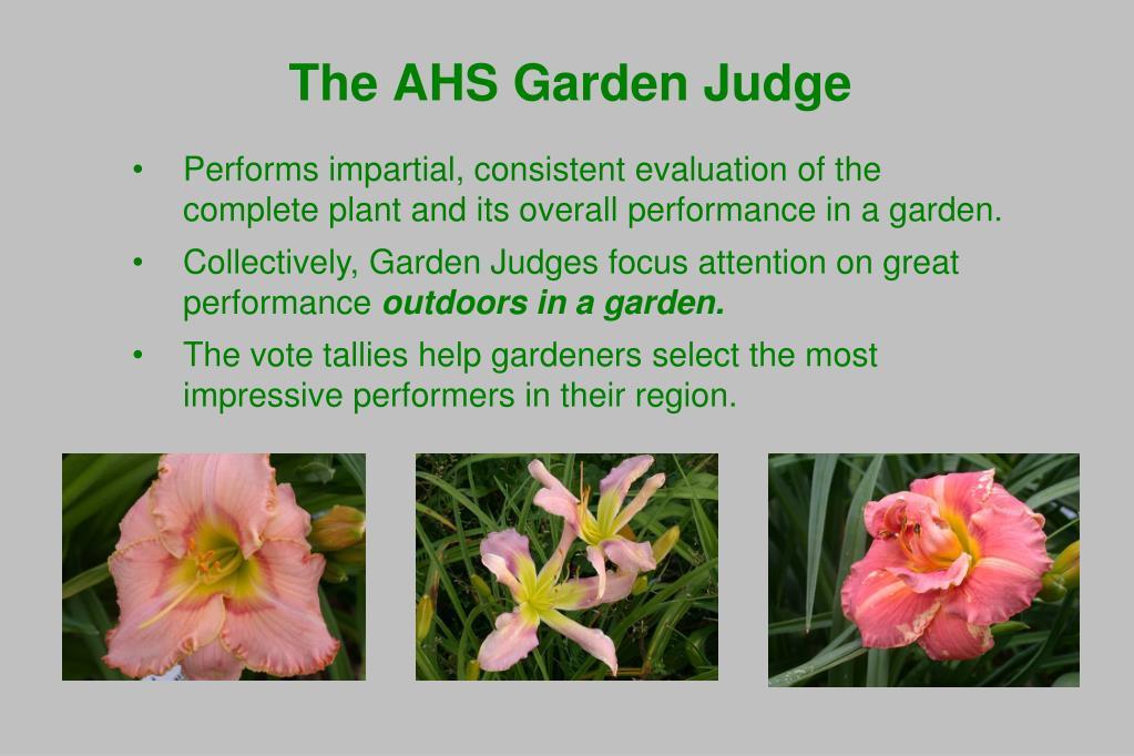 The AHS Garden Judge