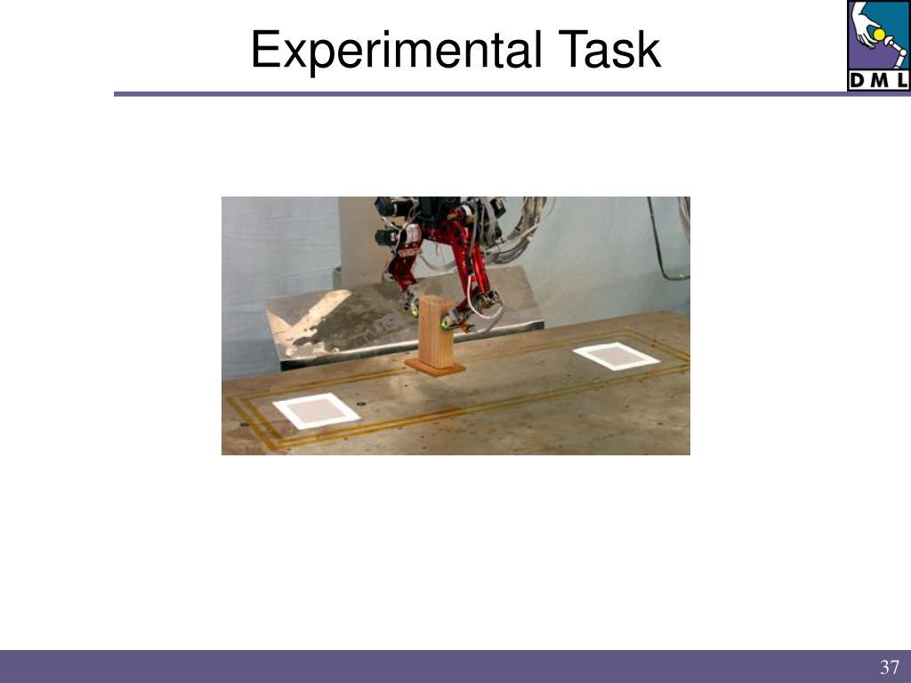 Experimental Task