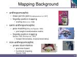 mapping background