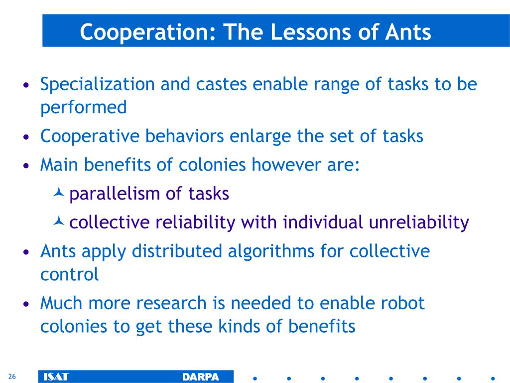 Cooperation: The Lessons of Ants