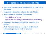 cooperation the lessons of ants