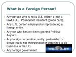 what is a foreign person