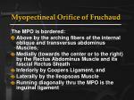 myopectineal orifice of fruchaud