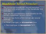 mandibular second premolars