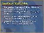 maxillary third molars