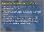 posterior permanent dentition