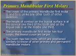 primary mandibular first molars
