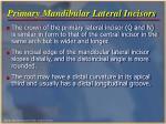 primary mandibular lateral incisors