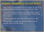 primary mandibular second molars