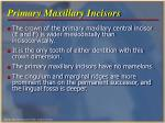 primary maxillary incisors