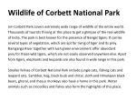 wildlife of corbett national park
