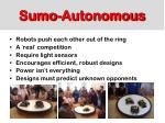 sumo autonomous