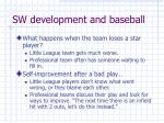 sw development and baseball8