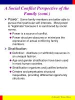 a social conflict perspective of the family cont