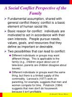 a social conflict perspective of the family