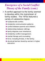 emergence of a social conflict theory of the family cont