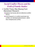 social conflict theory and the field of family studies