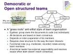 democratic or open structured teams