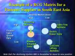 example of a bcg matrix for a fastener supplier in south east asia