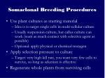 somaclonal breeding procedures