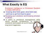 what exactly is eq