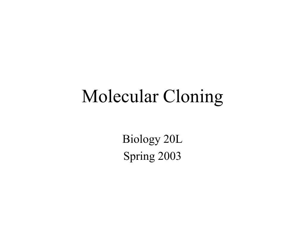 molecular cloning l.