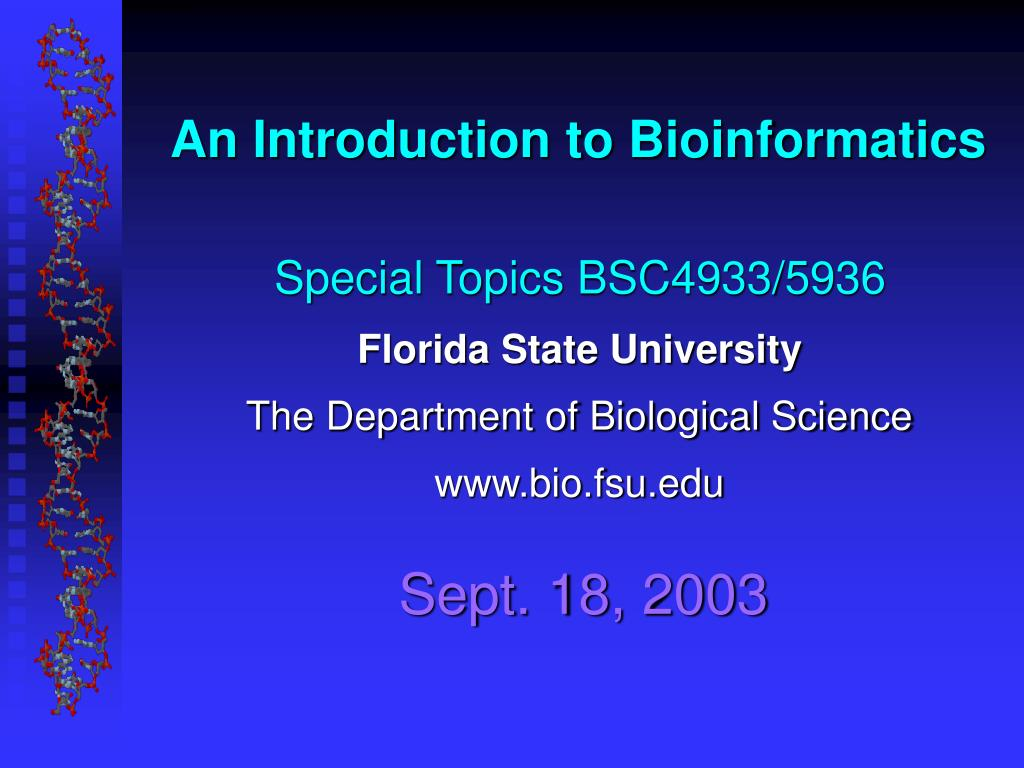 an introduction to bioinformatics l.