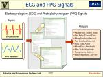 ecg and ppg signals