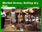 market scene selling dry fish