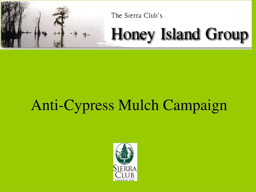 anti cypress mulch campaign l.
