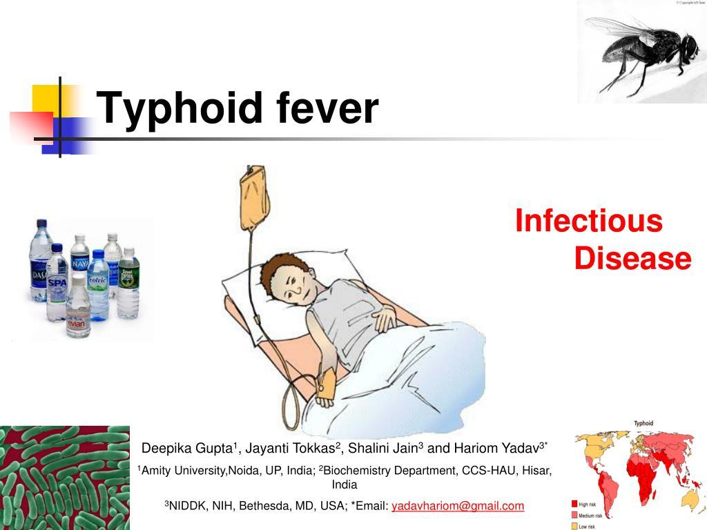 typhoid fever l.