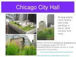 chicago city hall28