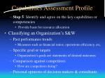 capabilities assessment profile3