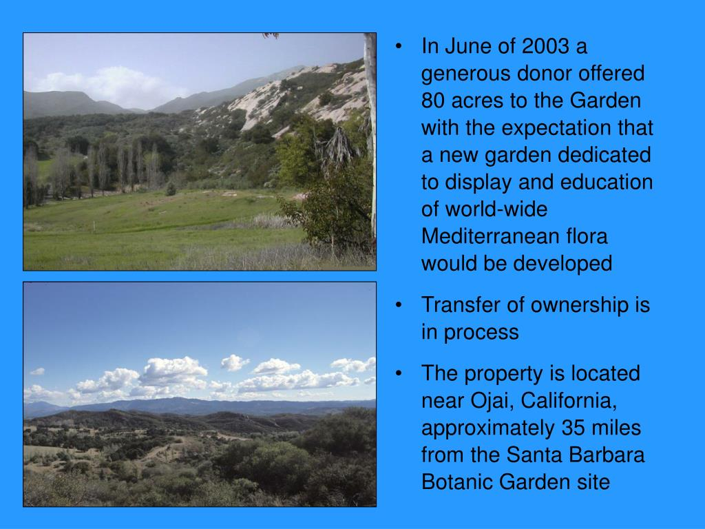 In June of 2003 a generous donor offered 80 acres to the Garden with the expectation that a new garden dedicated to display and education of world-wide Mediterranean flora would be developed